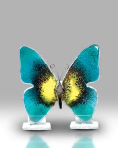 Butterfly 1664-17