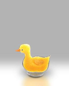 Duckling 1703-17